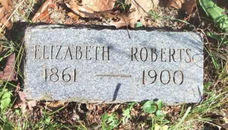 ROBERTS, ELIZABETH - Texas County, Missouri | ELIZABETH ROBERTS - Missouri Gravestone Photos