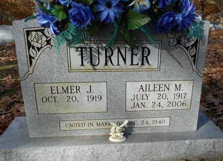 TURNER, AILEEN M. - Texas County, Missouri | AILEEN M. TURNER - Missouri Gravestone Photos