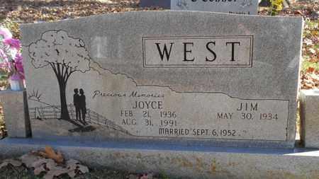 WEST, JOYCE - Texas County, Missouri | JOYCE WEST - Missouri Gravestone Photos