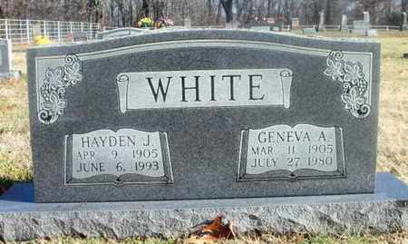 WHITE, HAYDEN JESSE - Texas County, Missouri | HAYDEN JESSE WHITE - Missouri Gravestone Photos