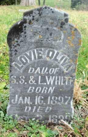 WHITE, LOVIE OLIVA - Texas County, Missouri | LOVIE OLIVA WHITE - Missouri Gravestone Photos