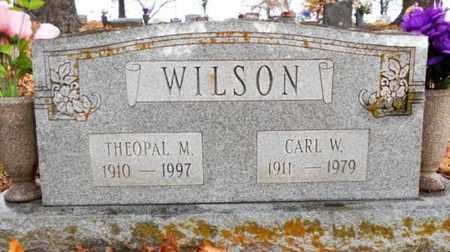 WILSON, CARL W. - Texas County, Missouri | CARL W. WILSON - Missouri Gravestone Photos