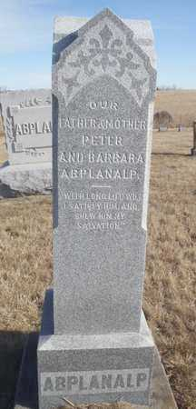 ABPLANALP, PETER - Worth County, Missouri | PETER ABPLANALP - Missouri Gravestone Photos