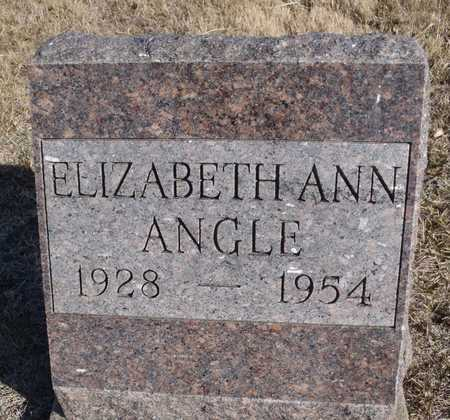BEAUCHAMP ANGLE, ELIZABETH ANN - Worth County, Missouri | ELIZABETH ANN BEAUCHAMP ANGLE - Missouri Gravestone Photos