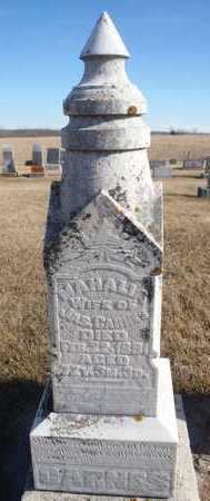 CARNES, MAHALIA - Worth County, Missouri | MAHALIA CARNES - Missouri Gravestone Photos