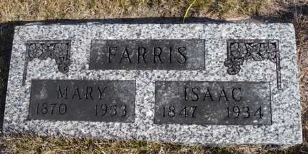 HENRY FARRIS, MARY - Worth County, Missouri | MARY HENRY FARRIS - Missouri Gravestone Photos