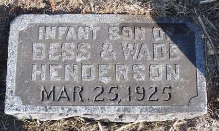 HENDERSON, WILLIAM EDWARD - Worth County, Missouri | WILLIAM EDWARD HENDERSON - Missouri Gravestone Photos