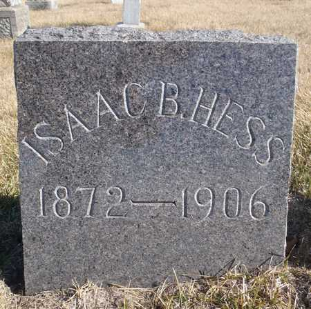 HESS, ISAAC B. - Worth County, Missouri   ISAAC B. HESS - Missouri Gravestone Photos
