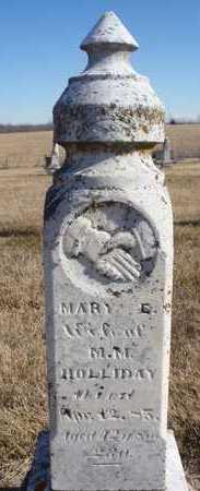 HOLLIDAY, MARY EVALINE - Worth County, Missouri | MARY EVALINE HOLLIDAY - Missouri Gravestone Photos