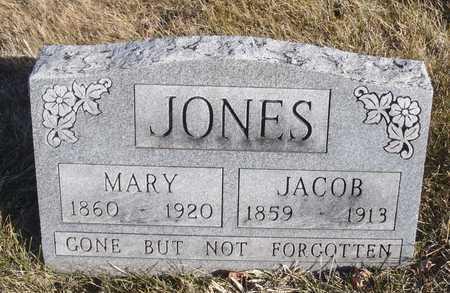 MARSHALL JONES, MARY - Worth County, Missouri | MARY MARSHALL JONES - Missouri Gravestone Photos