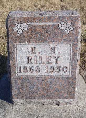 RILEY, ELIAS NIMROD - Worth County, Missouri | ELIAS NIMROD RILEY - Missouri Gravestone Photos