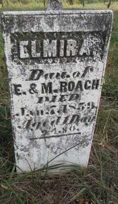 ROACH, ELMIRA - Worth County, Missouri   ELMIRA ROACH - Missouri Gravestone Photos