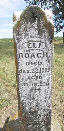 ROACH, ELI - Worth County, Missouri   ELI ROACH - Missouri Gravestone Photos