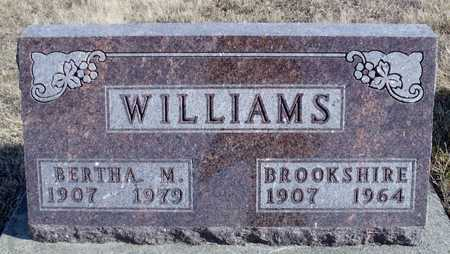 WILLIAMS, BERTHA M. - Worth County, Missouri | BERTHA M. WILLIAMS - Missouri Gravestone Photos
