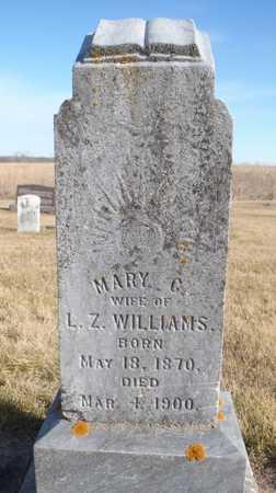 BROOKSHIRE WILLIAMS, MARY CATHERINE - Worth County, Missouri | MARY CATHERINE BROOKSHIRE WILLIAMS - Missouri Gravestone Photos