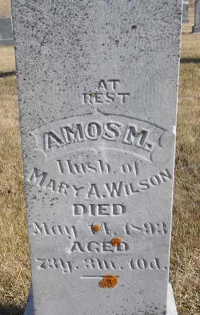 WILSON, AMOS M. - Worth County, Missouri | AMOS M. WILSON - Missouri Gravestone Photos