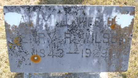 POTTER WILSON, AMY - Worth County, Missouri | AMY POTTER WILSON - Missouri Gravestone Photos