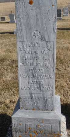 BALDWIN WILSON, MARY ANN - Worth County, Missouri | MARY ANN BALDWIN WILSON - Missouri Gravestone Photos