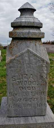 WOOD, ELIZA - Worth County, Missouri | ELIZA WOOD - Missouri Gravestone Photos