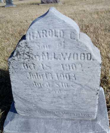 WOOD, HAROLD C. - Worth County, Missouri | HAROLD C. WOOD - Missouri Gravestone Photos