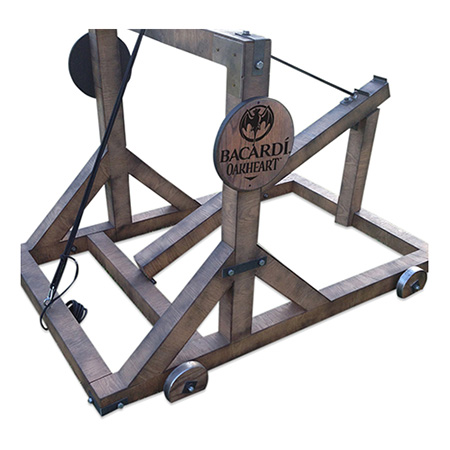 Custom Bean Bag Catapult