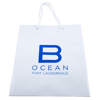 Custom-printed-glossy-shopping-bag
