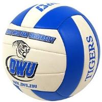 Custom-volleyball