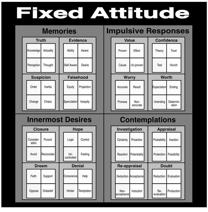 The Fixed Attitude Domain