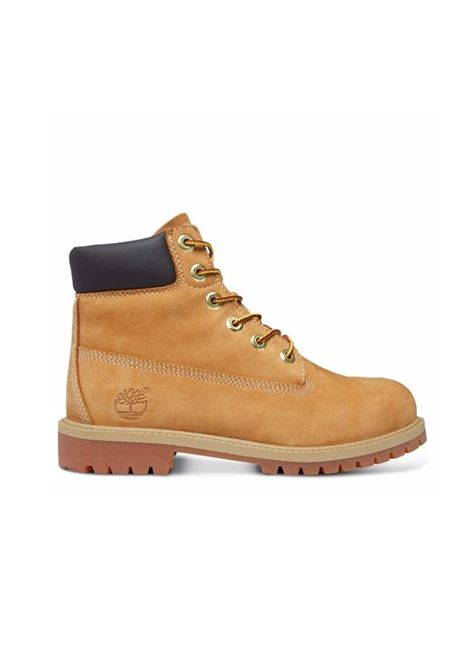 TIMBERLAND | SHOES | C12909X