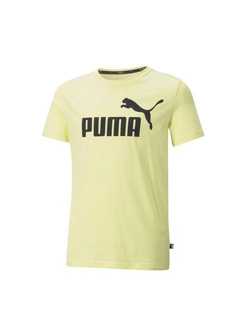 PUMA | T-SHIRT | 58696040