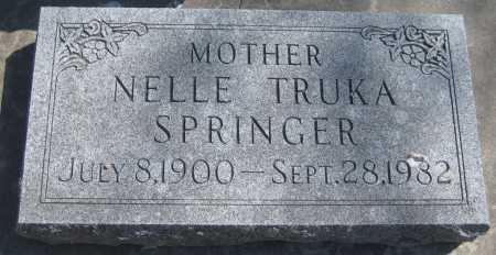 OGLESBY SPRINGER, NELLE - Adams County, Nebraska | NELLE OGLESBY SPRINGER - Nebraska Gravestone Photos