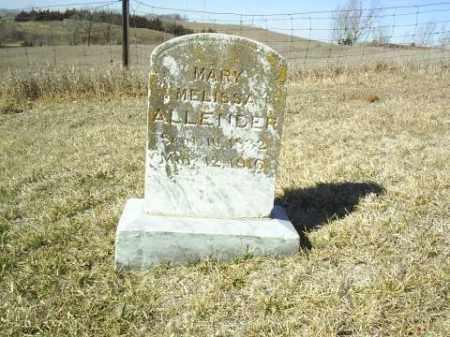 ALLENDER, MARY - Antelope County, Nebraska | MARY ALLENDER - Nebraska Gravestone Photos