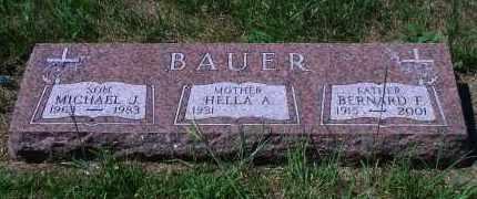 BAUER, MICHAEL J - Antelope County, Nebraska | MICHAEL J BAUER - Nebraska Gravestone Photos