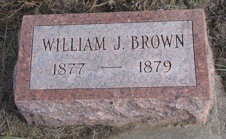 BROWN, WILLIAM J. - Antelope County, Nebraska | WILLIAM J. BROWN - Nebraska Gravestone Photos