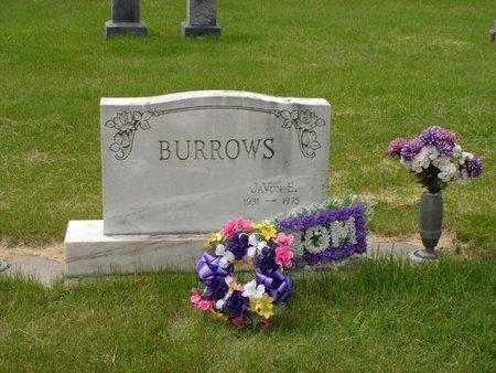 ASMUSSEN BURROWS, JAVON E - Antelope County, Nebraska | JAVON E ASMUSSEN BURROWS - Nebraska Gravestone Photos