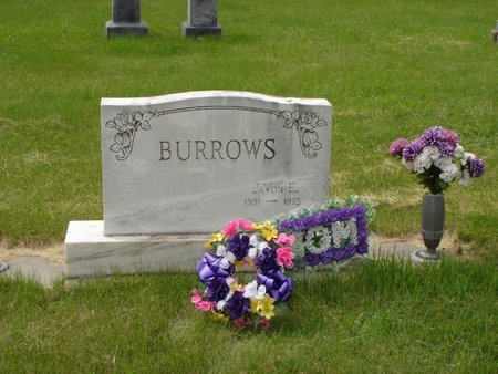 BURROWS, JAVON E - Antelope County, Nebraska   JAVON E BURROWS - Nebraska Gravestone Photos
