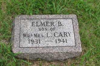 CARY, ELMER B - Antelope County, Nebraska | ELMER B CARY - Nebraska Gravestone Photos