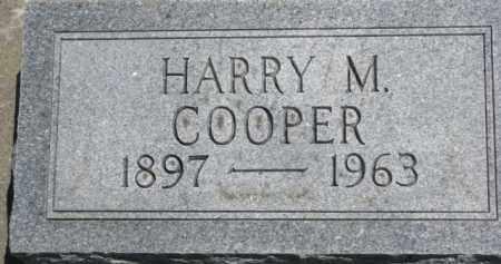 COOPER, HARRY M. - Antelope County, Nebraska   HARRY M. COOPER - Nebraska Gravestone Photos