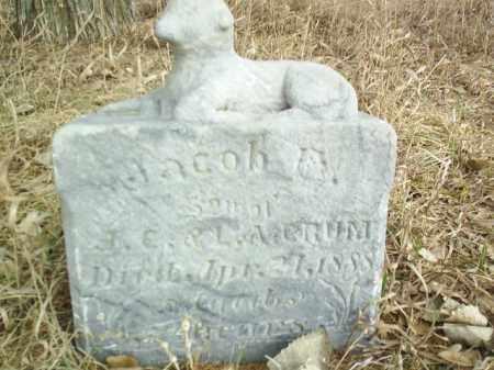 CRUM, JACOB - Antelope County, Nebraska   JACOB CRUM - Nebraska Gravestone Photos