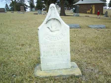 FORD, EDDIE - Antelope County, Nebraska | EDDIE FORD - Nebraska Gravestone Photos