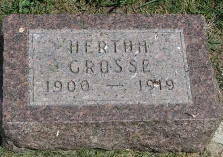 GROSSE, HERTHA - Antelope County, Nebraska | HERTHA GROSSE - Nebraska Gravestone Photos