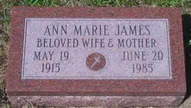 JAMES, ANN MARIE - Antelope County, Nebraska | ANN MARIE JAMES - Nebraska Gravestone Photos