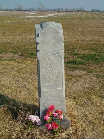 JILLSON, ANNIE M. - Antelope County, Nebraska | ANNIE M. JILLSON - Nebraska Gravestone Photos