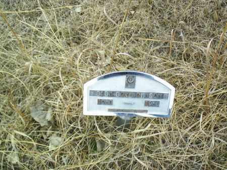 JOHNSON, INFANT - Antelope County, Nebraska   INFANT JOHNSON - Nebraska Gravestone Photos