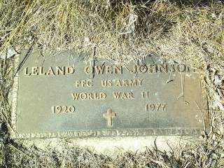 JOHNSON, LELAND OWEN - Antelope County, Nebraska | LELAND OWEN JOHNSON - Nebraska Gravestone Photos