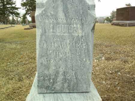 MEYERS, LOUISA - Antelope County, Nebraska | LOUISA MEYERS - Nebraska Gravestone Photos