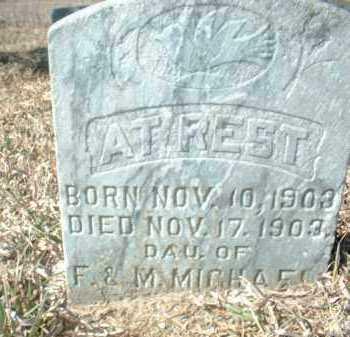 MICHAEL, INFANT DAU - Antelope County, Nebraska | INFANT DAU MICHAEL - Nebraska Gravestone Photos