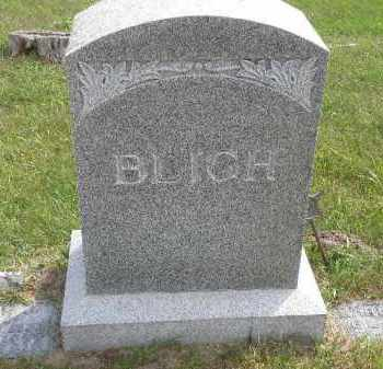 MONUMENT, BLIGH - Antelope County, Nebraska | BLIGH MONUMENT - Nebraska Gravestone Photos