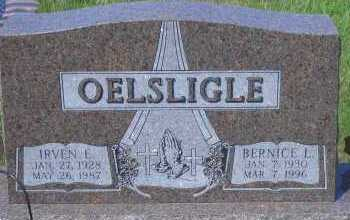 DUSEK OELSLIGLE, BERNICE L - Antelope County, Nebraska | BERNICE L DUSEK OELSLIGLE - Nebraska Gravestone Photos