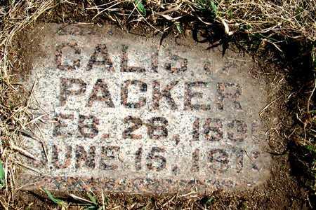 PACKER, CALIS (?) - Antelope County, Nebraska | CALIS (?) PACKER - Nebraska Gravestone Photos